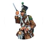 Napoleonic Troups