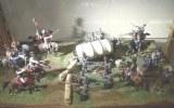 Napoleon battle