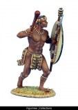 iNgobamakhosi Zulu Warrior