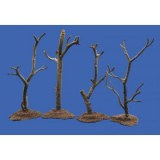 War torn trees each