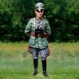 CS01039 Erwin Rommel RETIRE